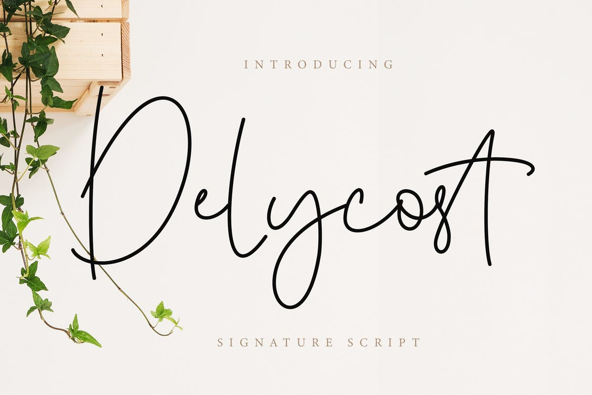 Delycost Signature Style