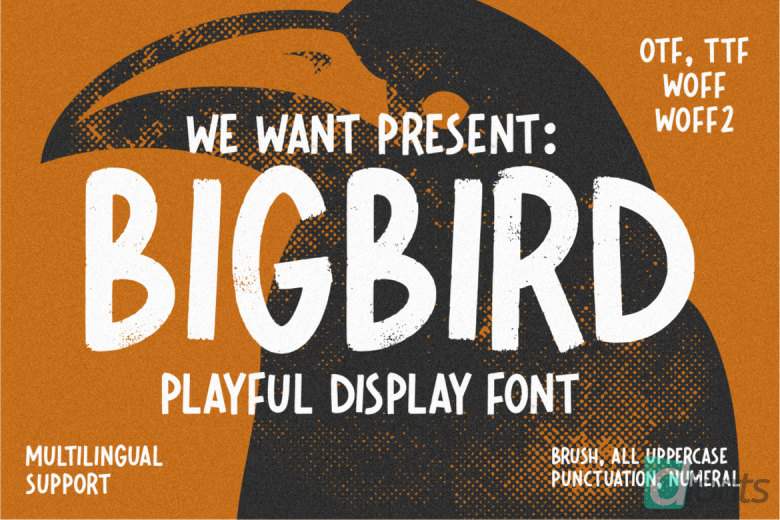 Bigbird Playful Display Font