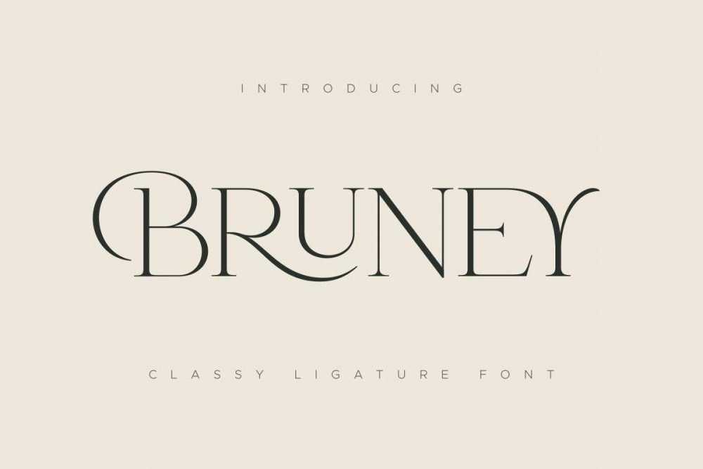 Bruney – Classy Ligature Font