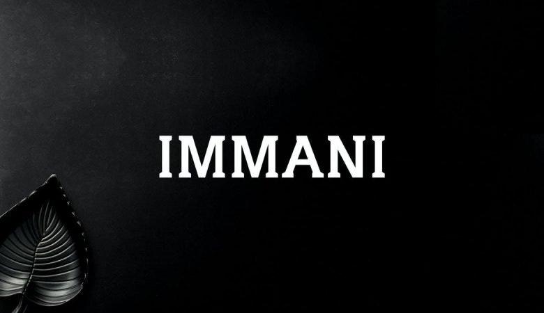 Immani Serif Font Family Pack
