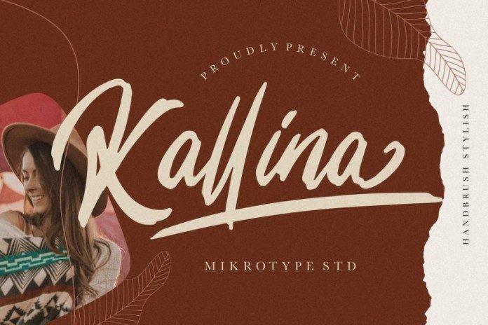 Kallina Handbrush Stylish
