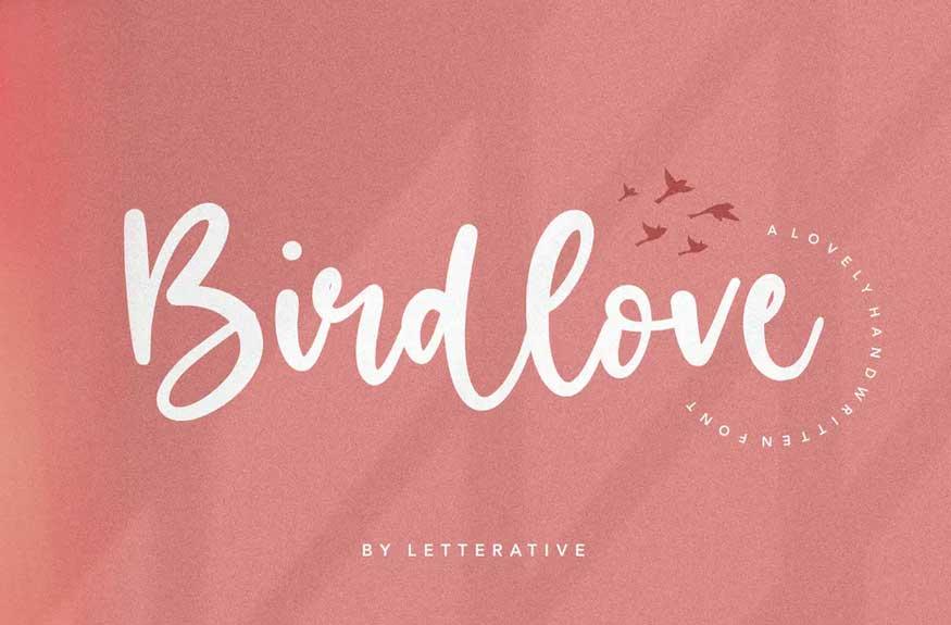 Birdlove Script Font