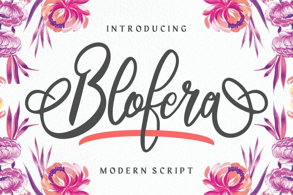 Blofera Modern Script Font