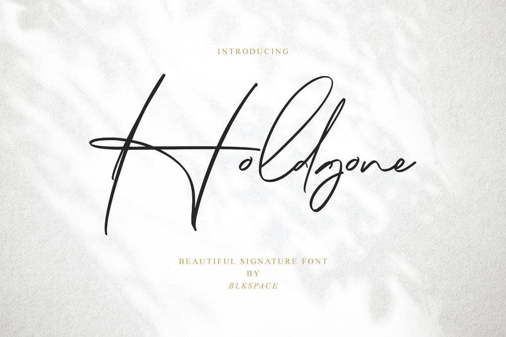 Holdgone Font