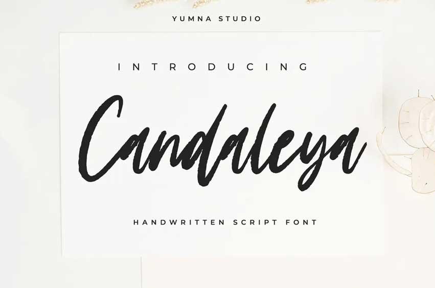Candaleya - Modern Handwritten Font
