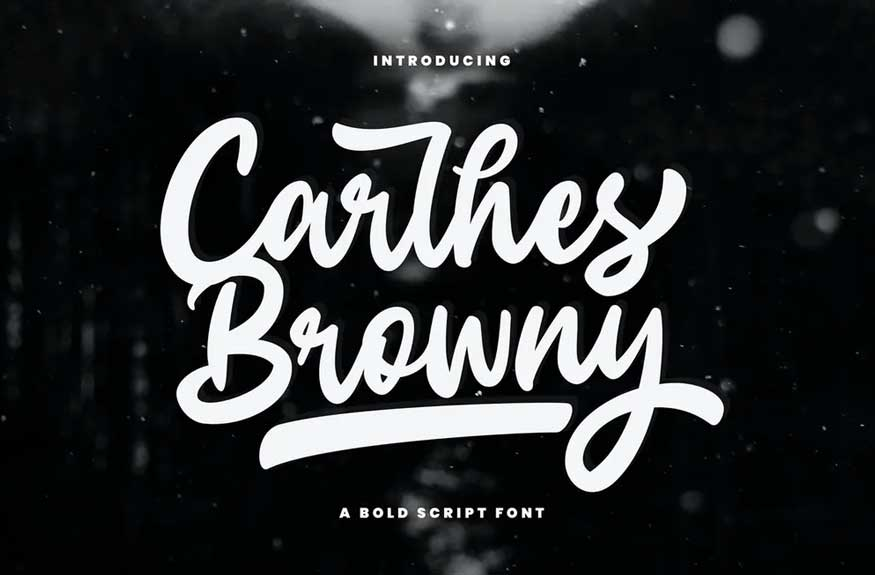 Carlhes Browny Script