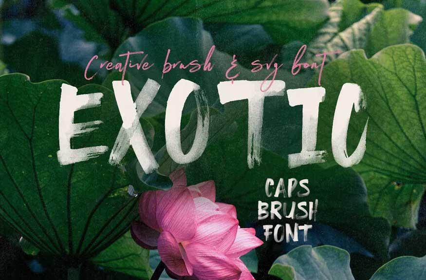 Exotic Brush Font