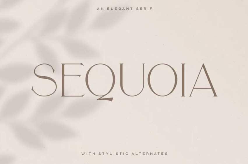Sequoia Typeface