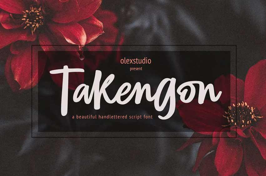 TAKENGON - Script