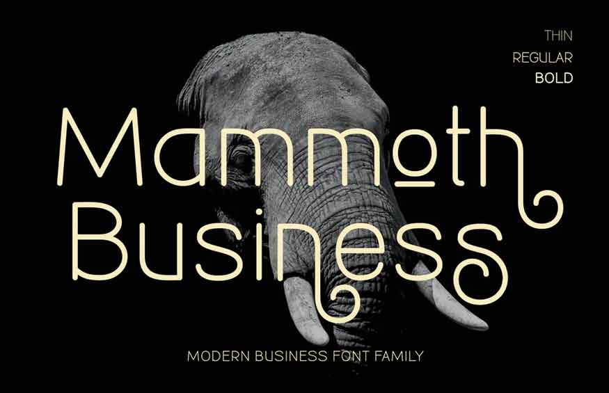 Mammoth Business Font Family
