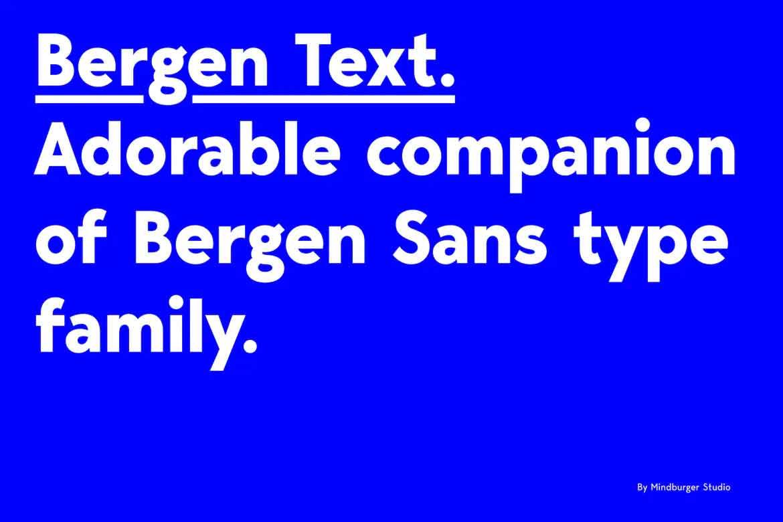 Bergen Text Font