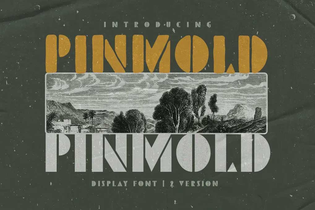 Pinmold Font