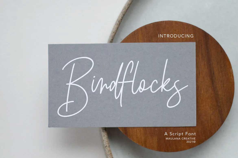 Birdflocks Script Font