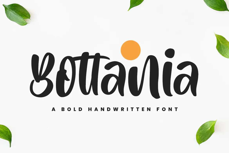 Bottania Font