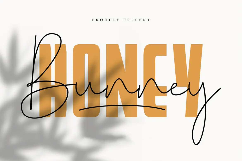 Honey Bunney Font