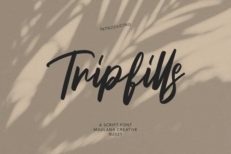 Tripfills Script Font