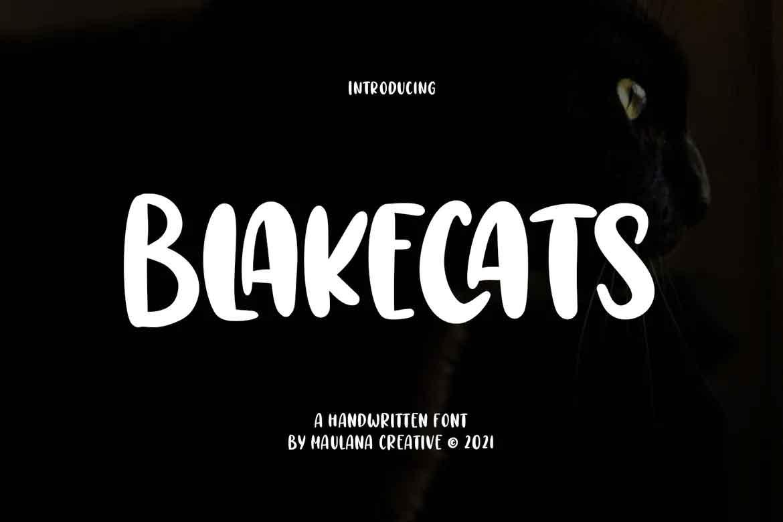 Blakecats Font