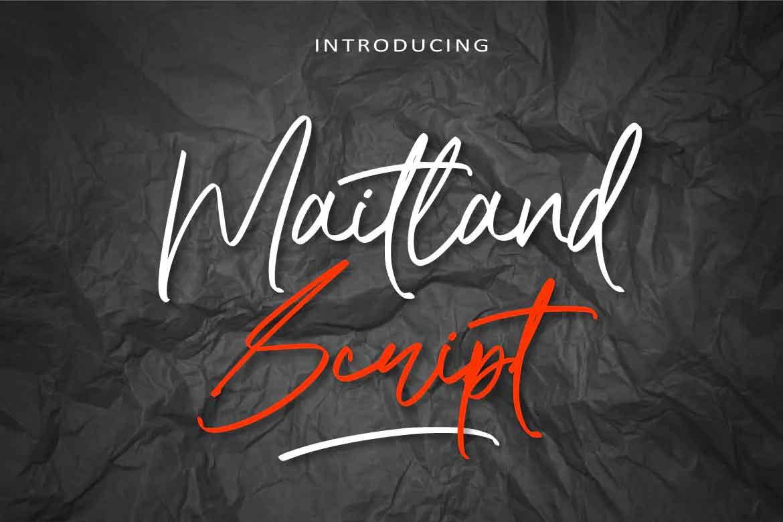 Maitland Script Font
