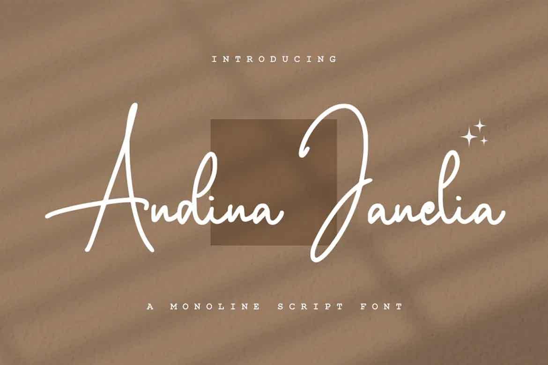 Andina Janelia Font