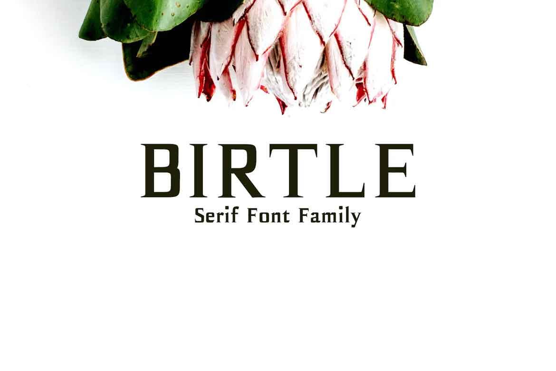 Birtle Font
