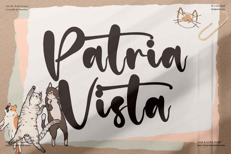 Patria Vista Font