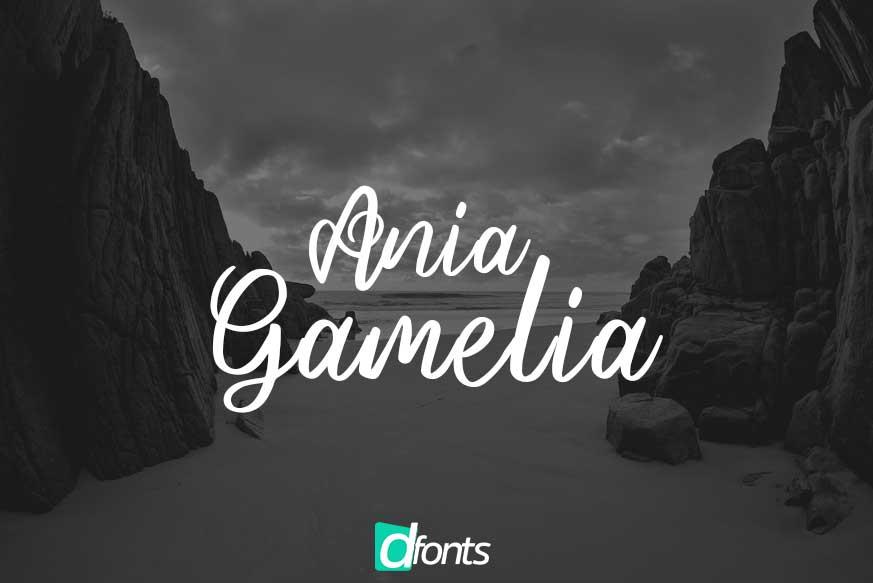 Ania Gamelia - Handlettering Script Font