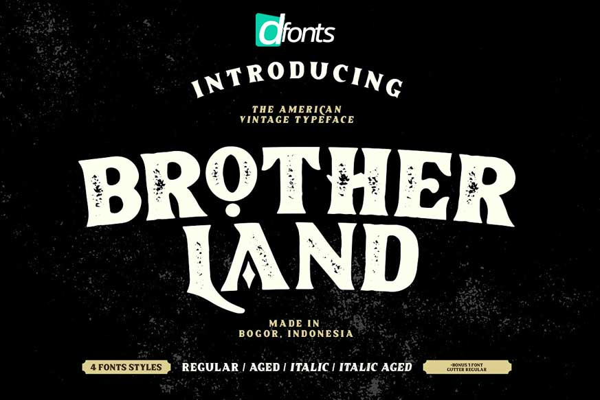Brotherland - American Vintage