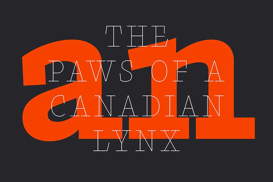 Font Family Download